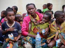 'Major humanitarian' crisis after cyclone slams southern Africa
