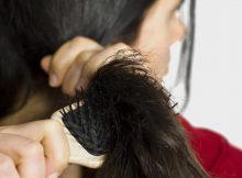 صحة الشعر وجماله.. السر في التغذية الصحية