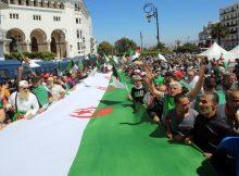 الجزائر.. المجلس الدستوري يعلن استحالة إجراء الانتخابات الرئاسية بموعدها