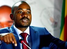 Zimbabwe opposition MDC party elects Nelson Chamisa as leader